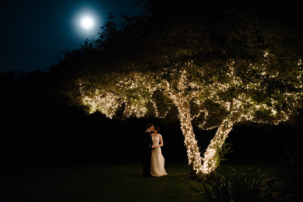 Green Gables Night Wedding Bridal Portrait