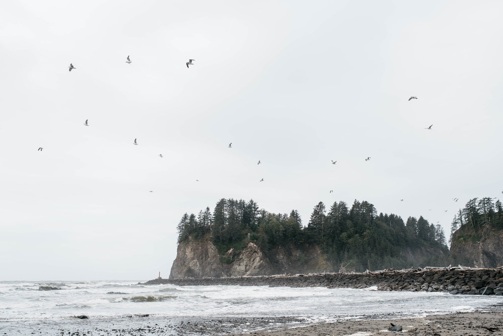 Olympic National Park First Beach Travel photography-1001.jpg
