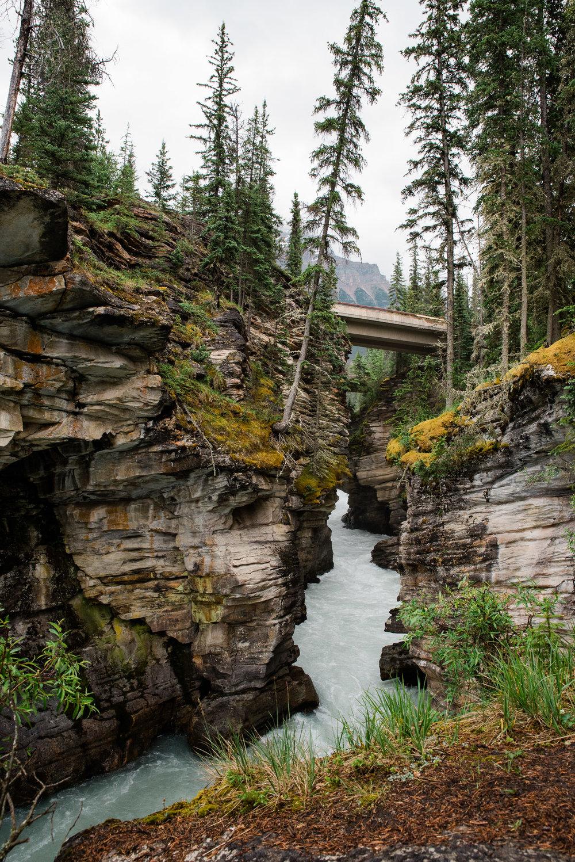 Athabasca Falls, Jasper , Canada, Mariah Fisher Photography-2305.jpg