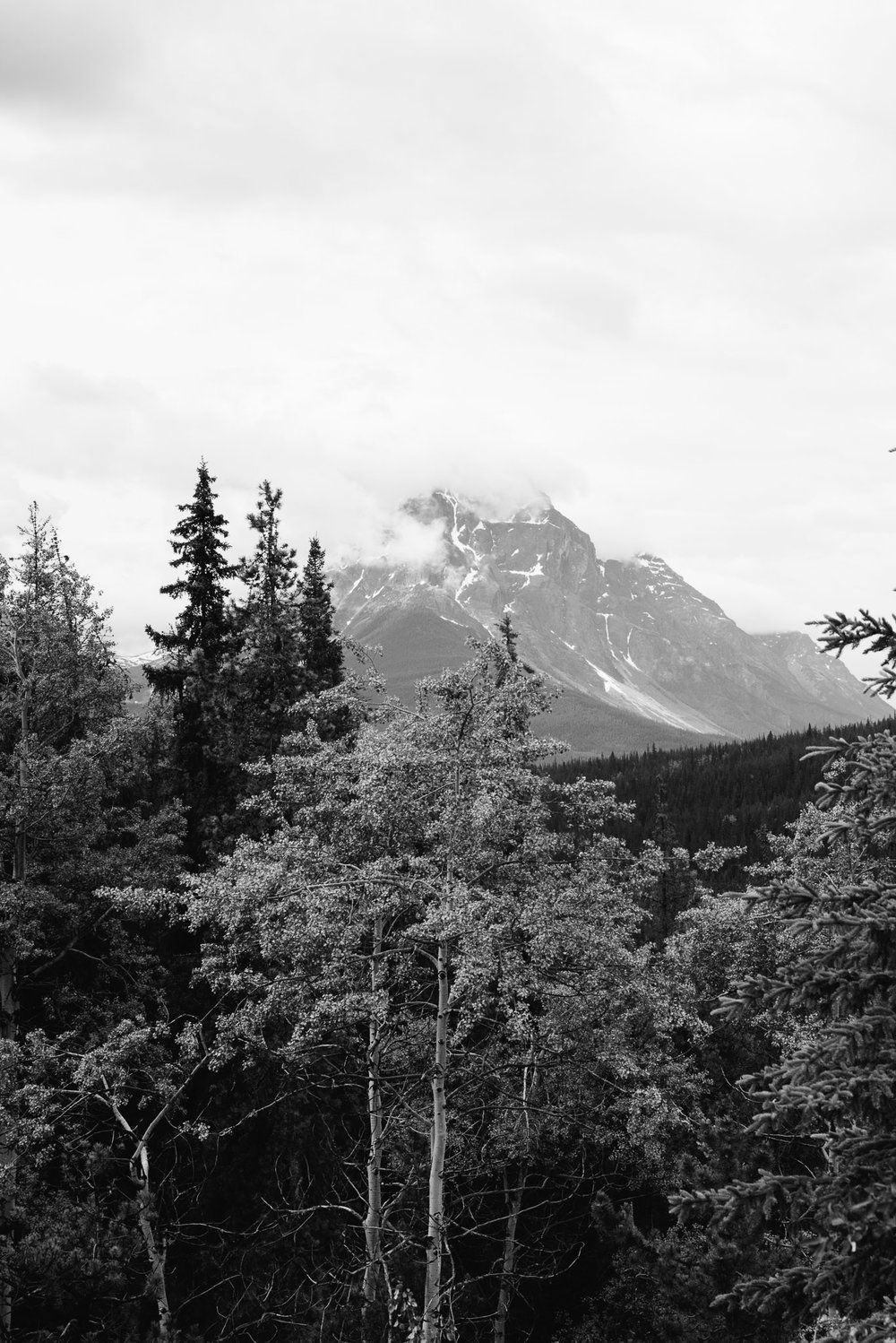 Jasper National Park, Canada, Mariah Fisher Photography-2340.jpg