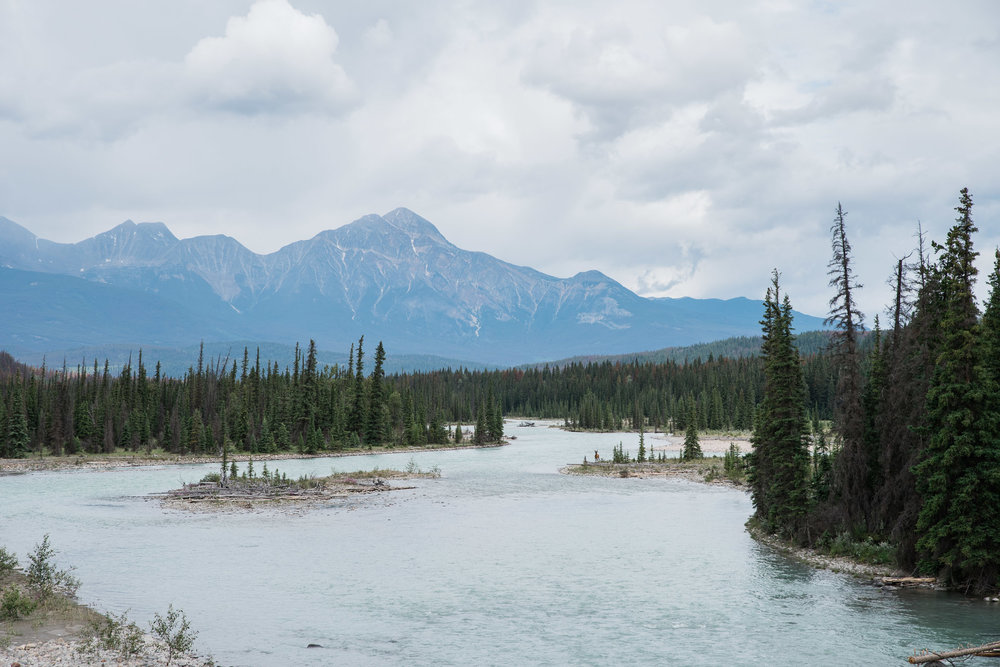 Jasper National Park, Canada, Mariah Fisher Photography-2387.jpg