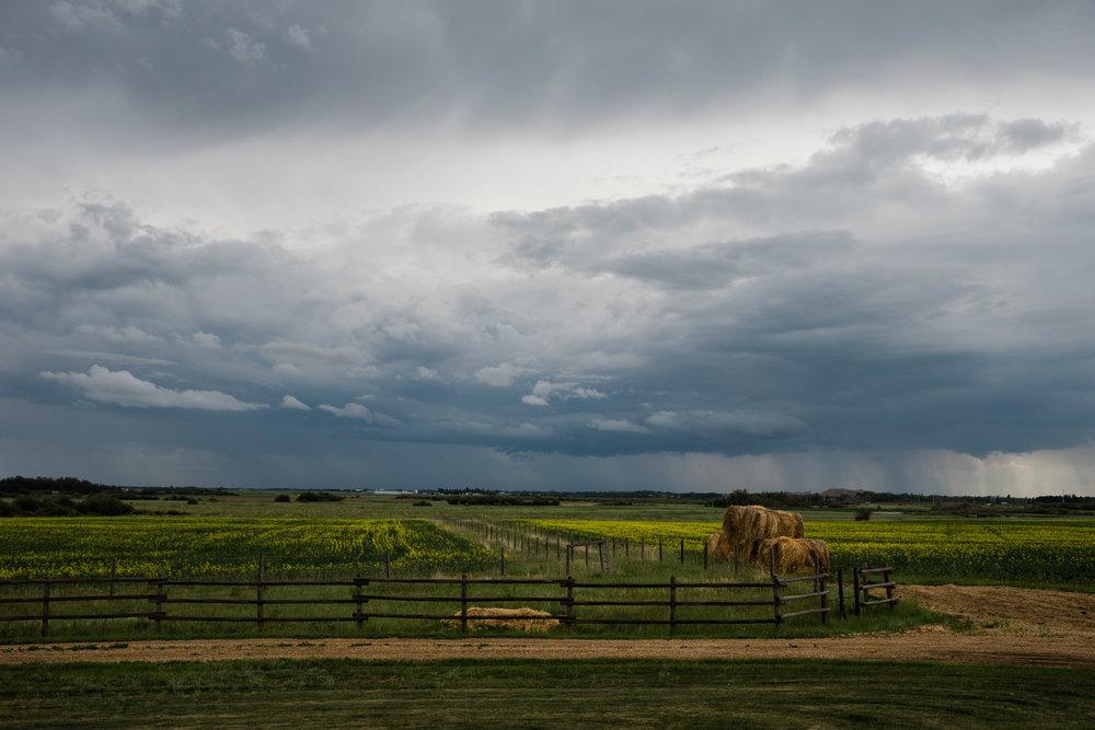 Edmonton, Alberta Canada, Mariah Fisher Photography-2914.jpg