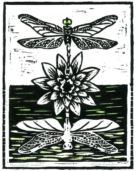 Melissa's Hine's Emerald dragonfly for Endangered Species Print Project
