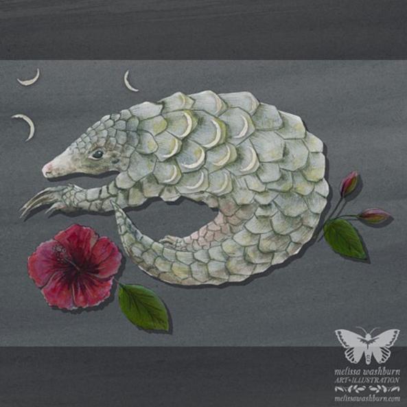 Artist: Melissa Washburn, Melissa Washburn Art & llustration