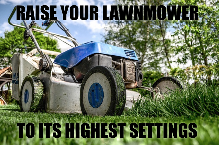 Mower Height.png
