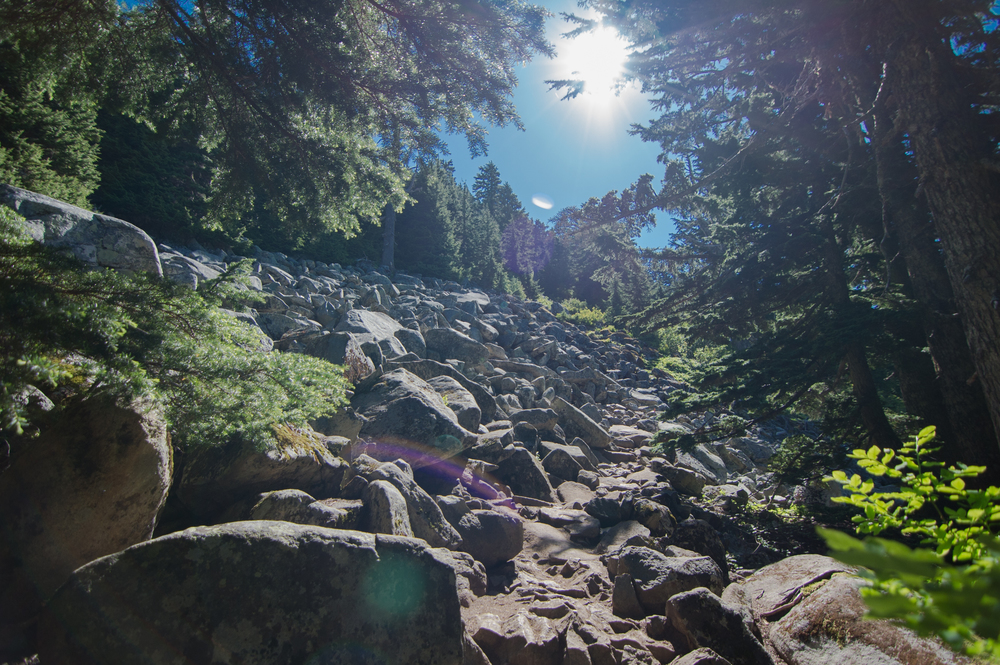 Mount_Pilchuck-10.jpg