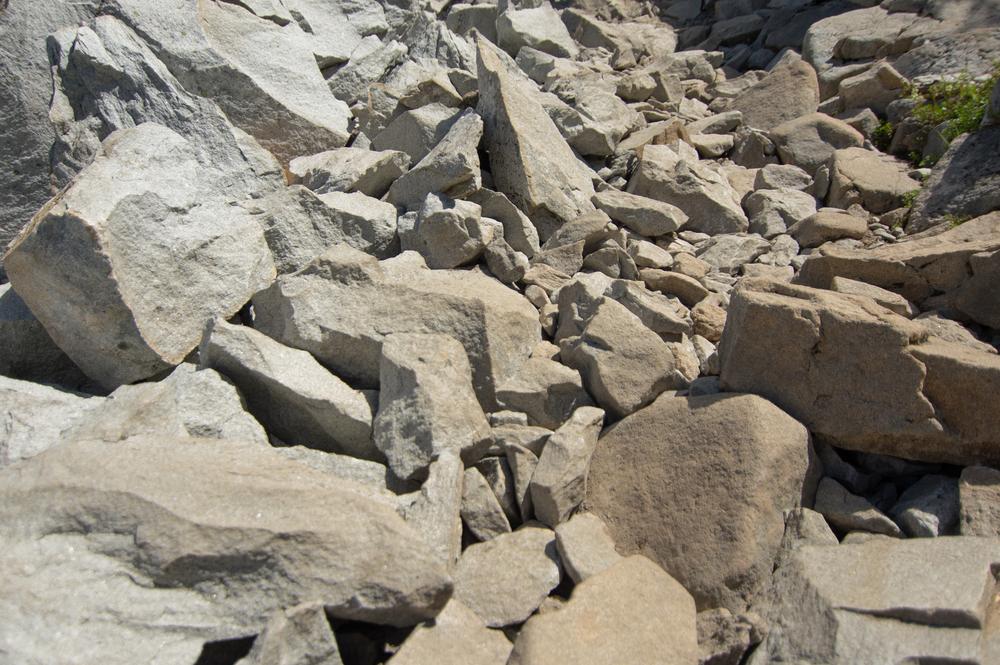 Mount_Pilchuck-19.jpg
