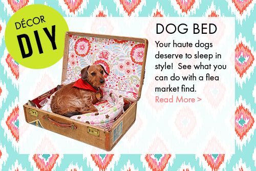 haute girls Dog bed