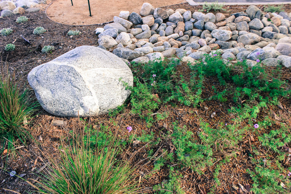 EcoTech California Sustainable Landscape