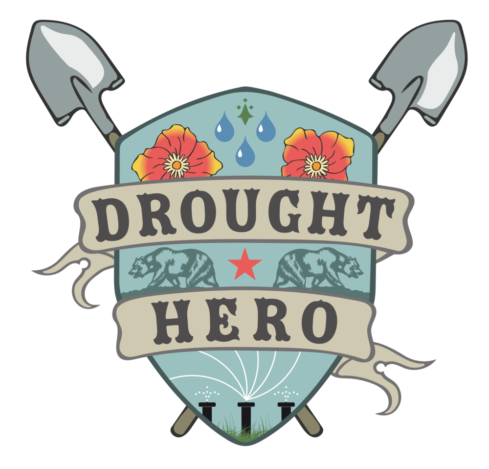 drought hero