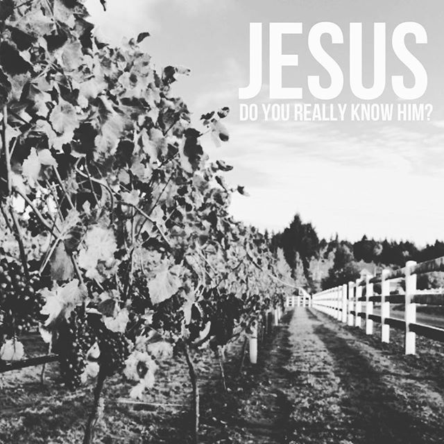 Join us tomorrow at 6:30pm as we continue our series: Jesus, Do You Really Know Him?  3570 W Fifth Avenue  Chicago, IL 60624  #Jesus #thetruevine #FRESH #freshharvestministries