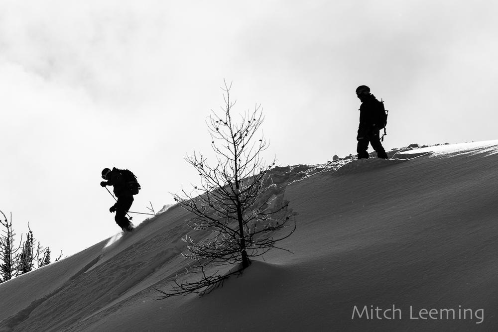 Winter Jumbo-5.jpg
