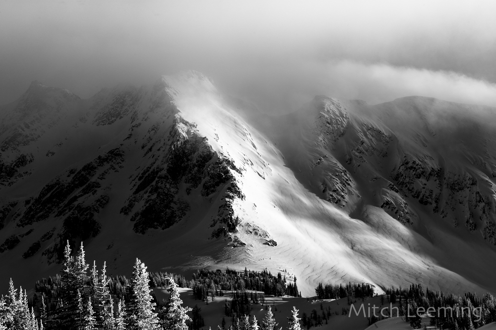 Winter Jumbo-7.jpg