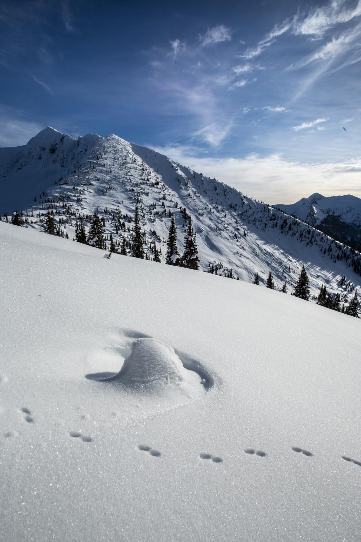 Ymir Peak