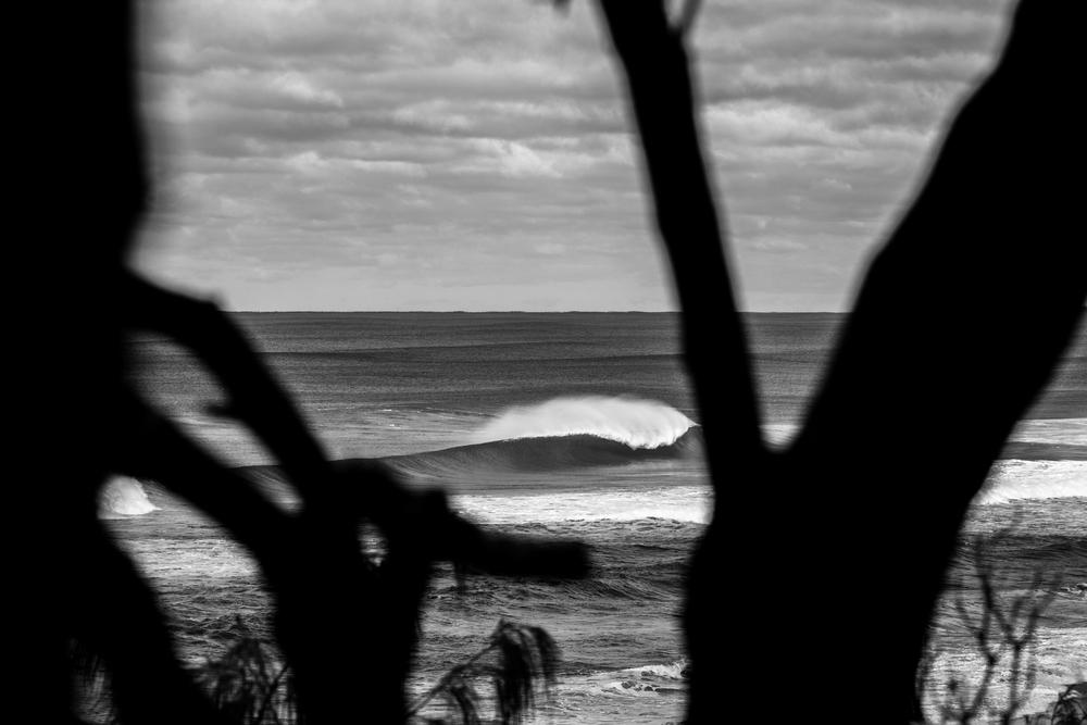Sunny Coast Surf-3.jpg