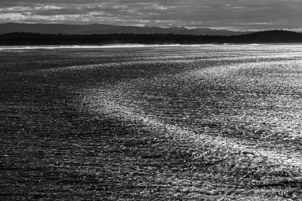 Sunny Coast Surf-10.jpg