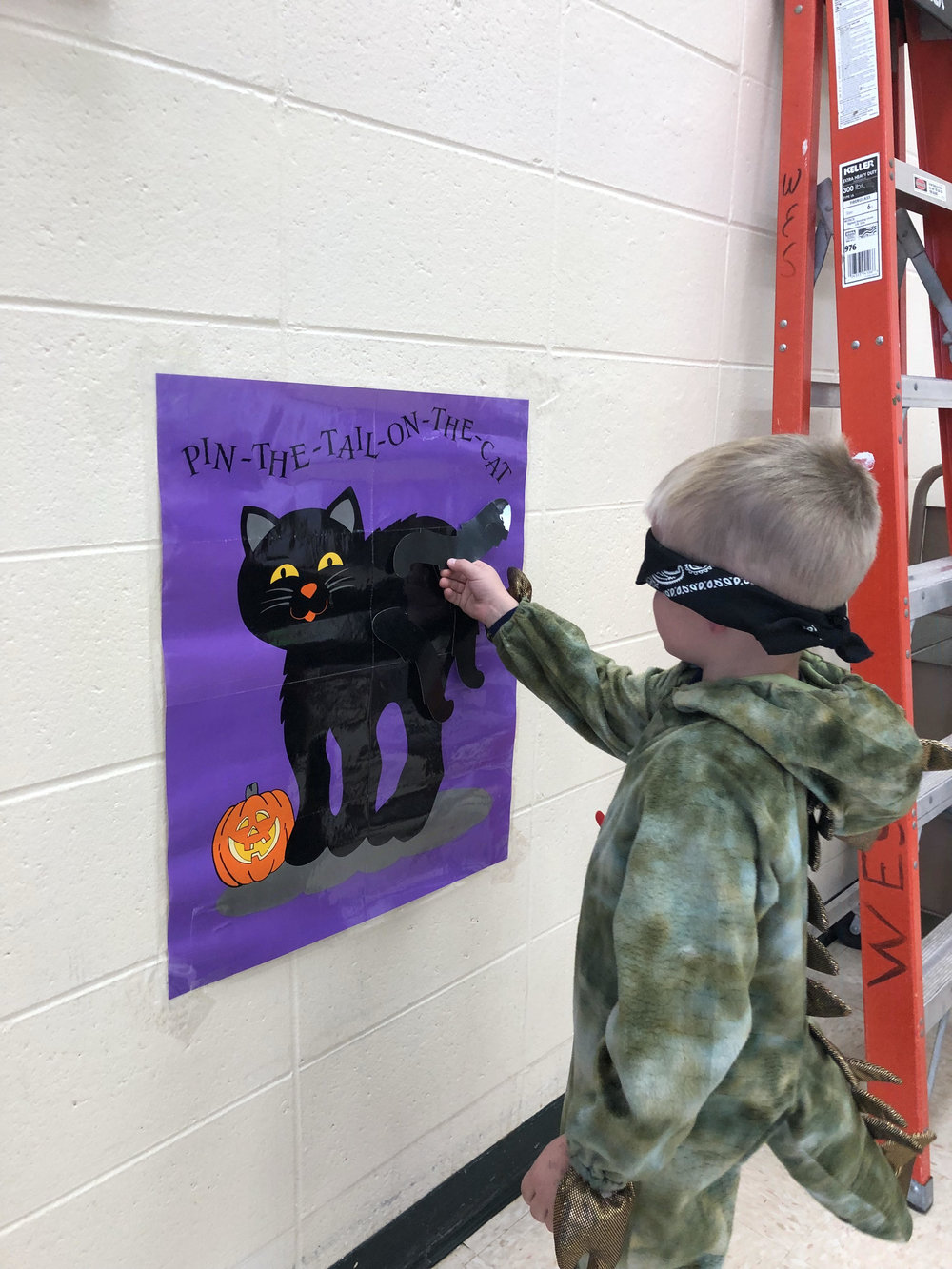 pin the tail on the cat!