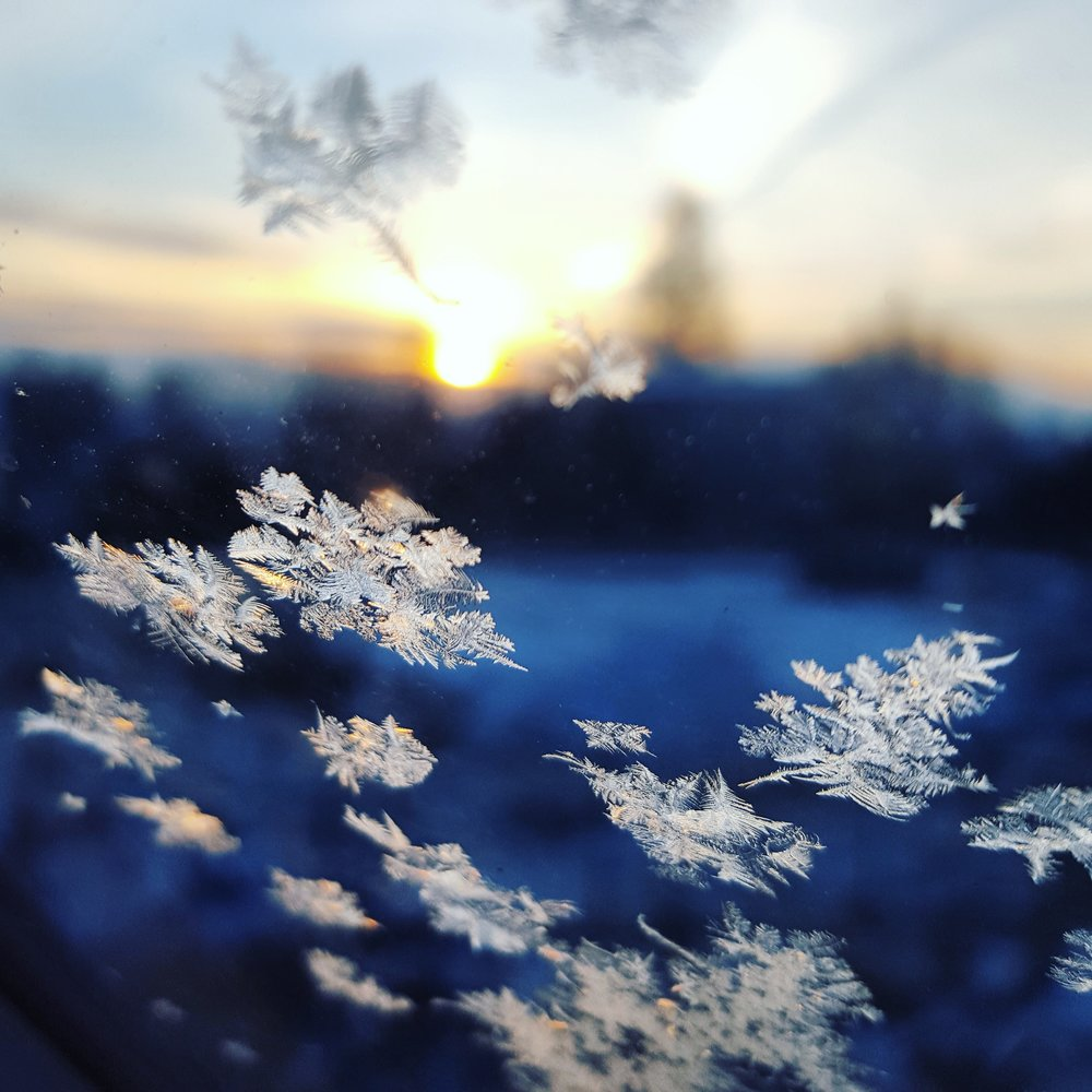 blue snowflakes.jpg