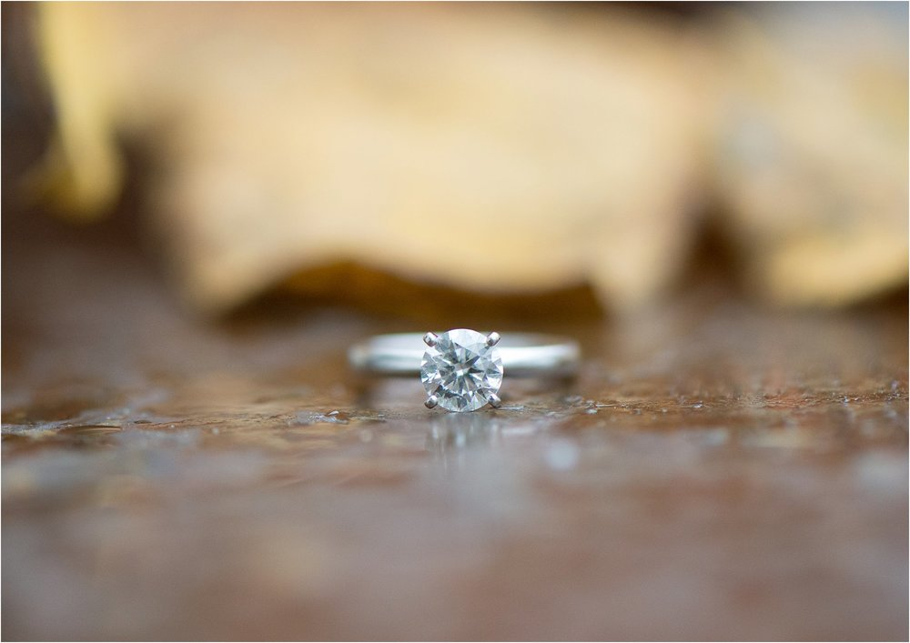 Nelson County Engagement-1-15.jpg