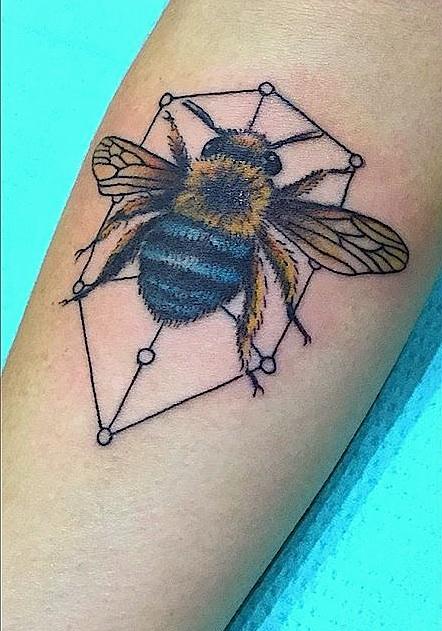 aussie bee.jpg