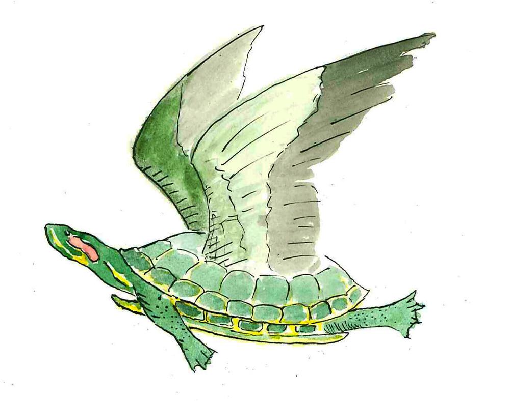 Poem-FlyingTurtle.jpg