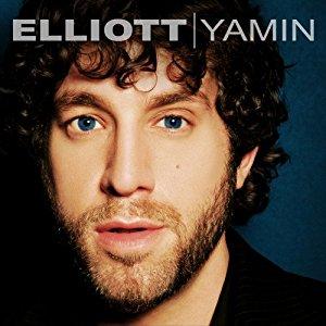 elliot yamin.jpg