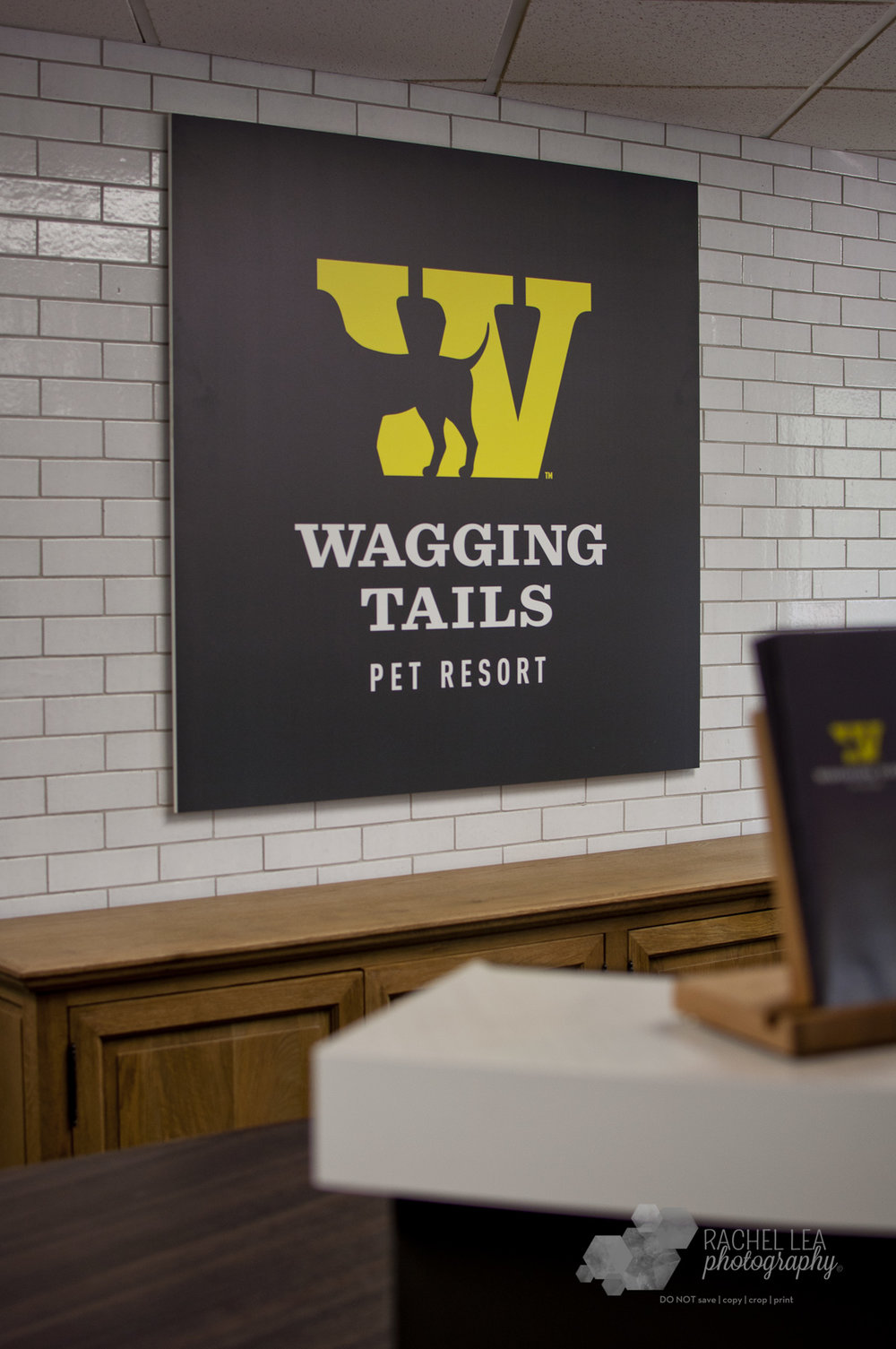 WaggingTails-35.jpg