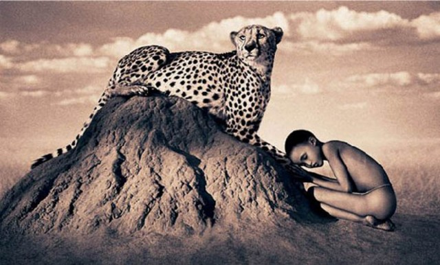 Nature-Masterpieces-leopard-gregory-colbert-saved-by-Chic-n-Cheap-Living