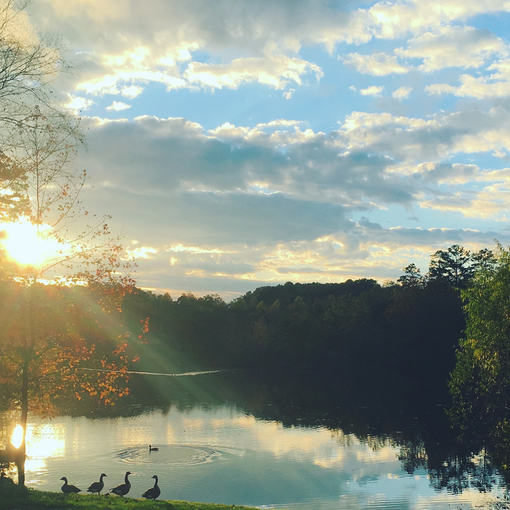 Fall_North_Carolina_Charlotte_Photographer-14-2.jpg