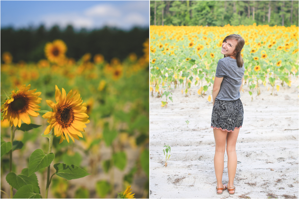 Sunflower Field, Jon Courville Photography