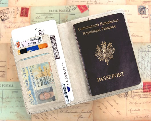 Mighty_Passport_Cover-Stamped-open_edited.jpg