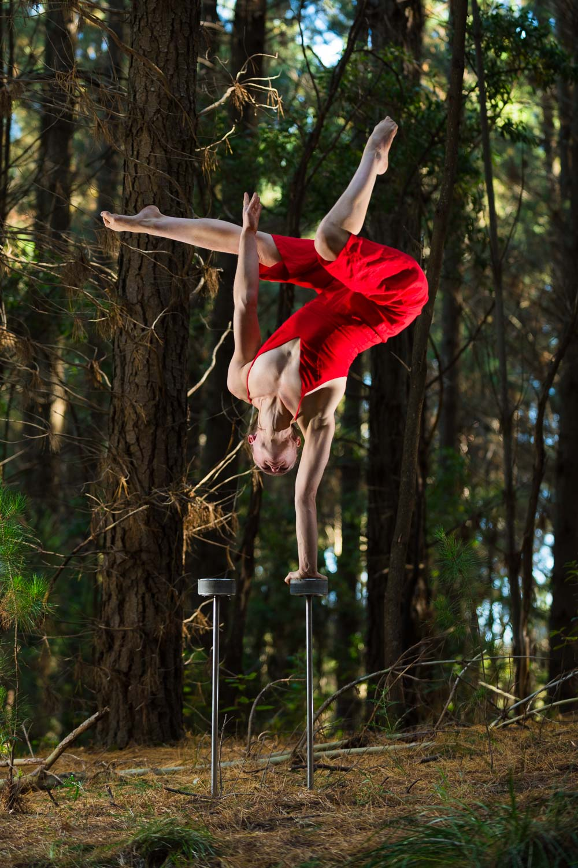 Forest Handstands-1.jpg