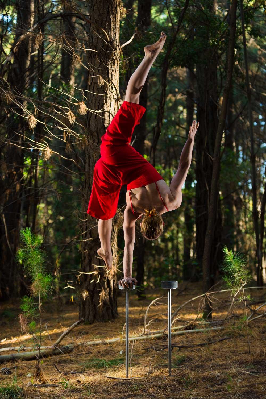 Forest Handstands-2.jpg