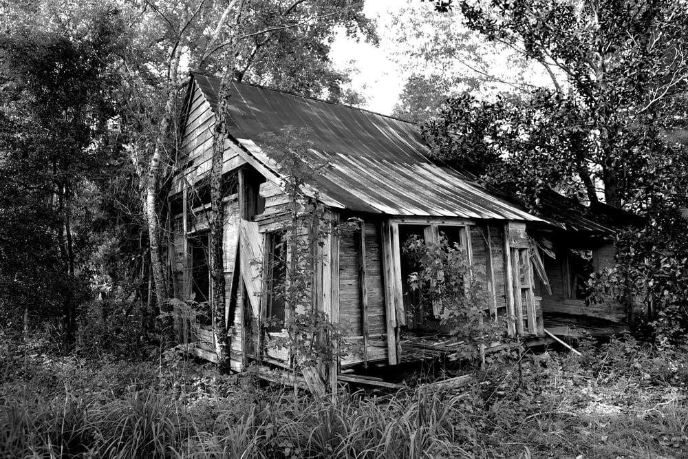 Florida2012-1.jpg