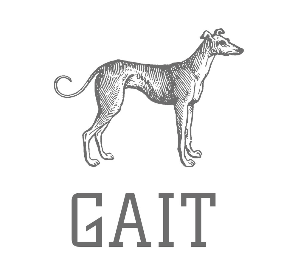 GAIT-brand.jpg