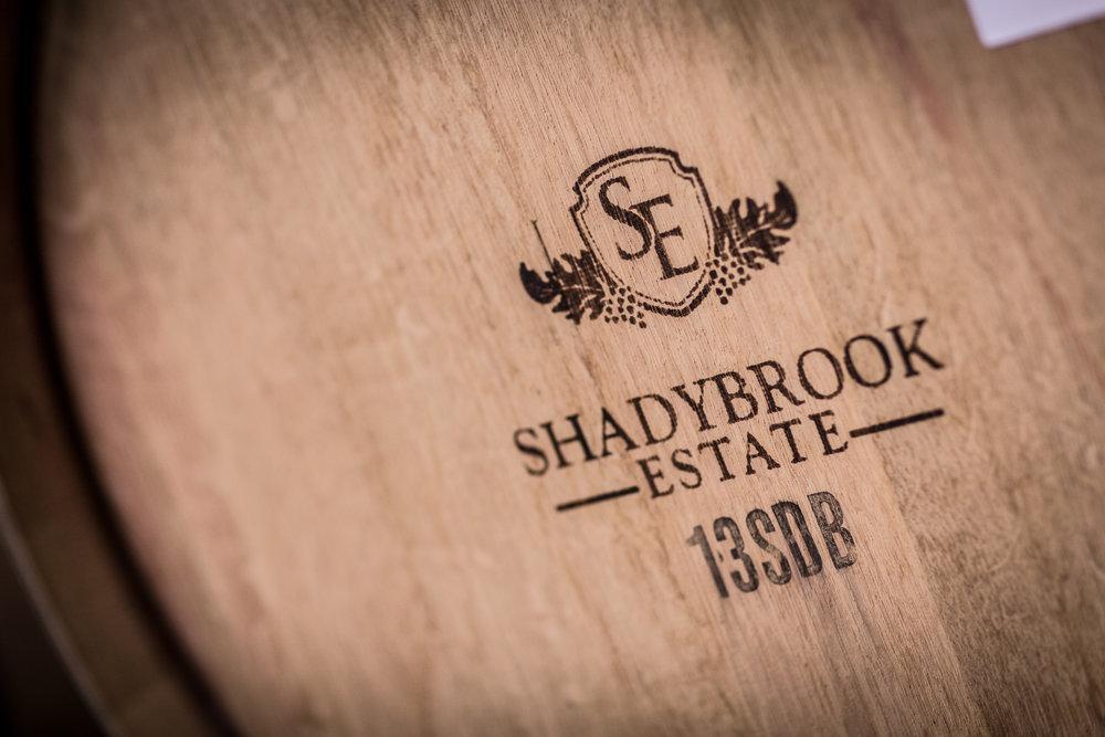 Shadybrook2016_1-1598.jpg