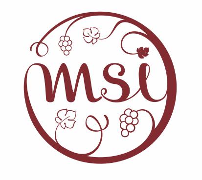 MSI.png