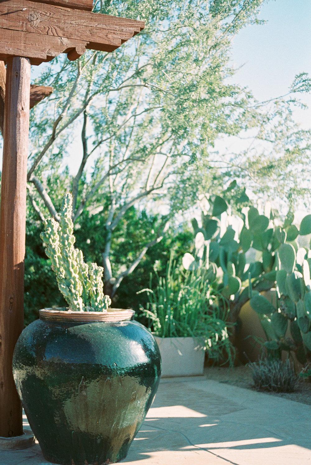 Desert Boho-73.jpg