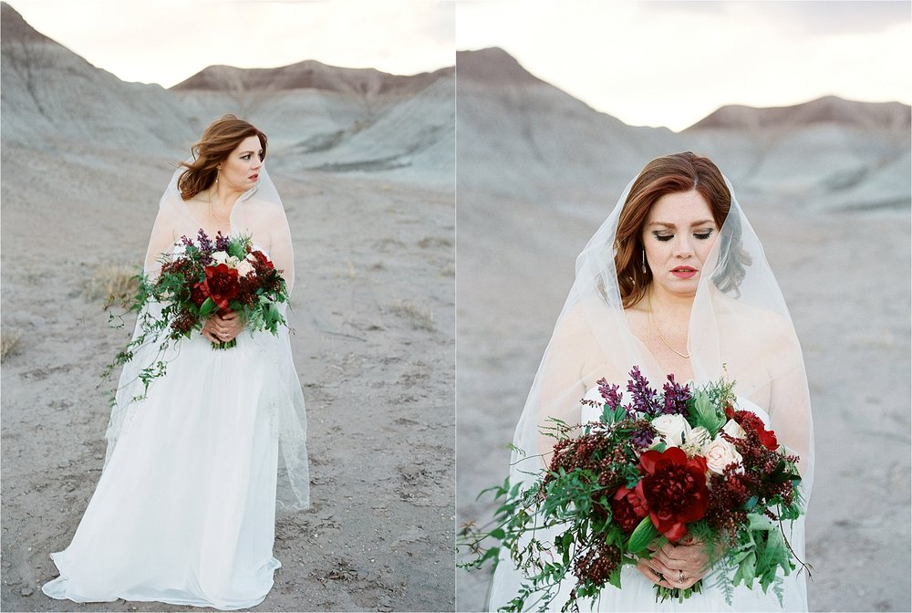 Sarah Jane Photography Fine art film phoenix scottsdale arizona wedding portrait photogragher painted desert elopement Missy and David_0023.jpg