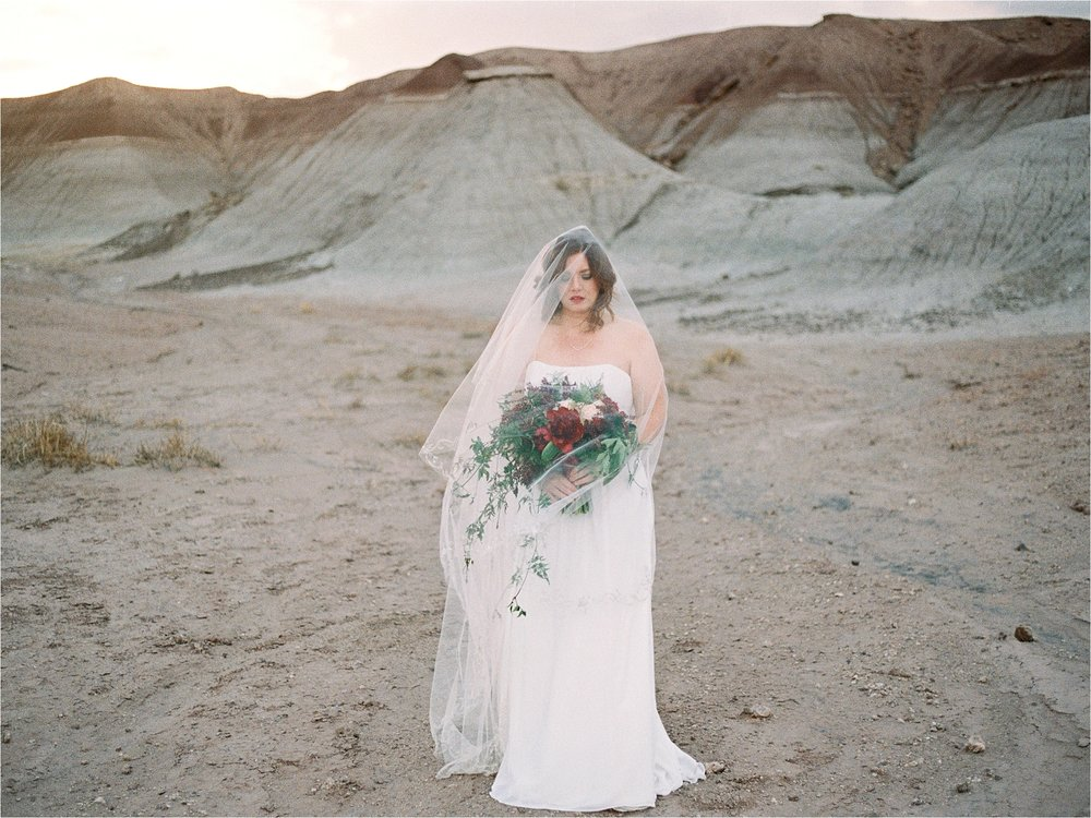 Sarah Jane Photography Fine art film phoenix scottsdale arizona wedding portrait photogragher painted desert elopement Missy and David_0022.jpg