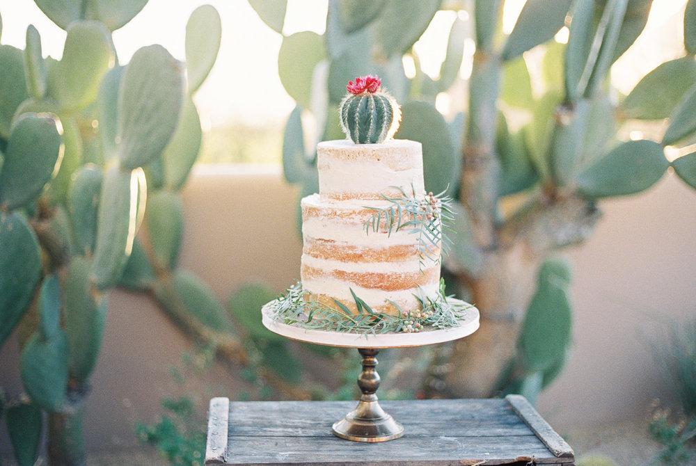 Sarah Jane Photography Fine Art Film Wedding Arizona AZ Wedding Scottsdale Phoenix Wedding-104.jpg