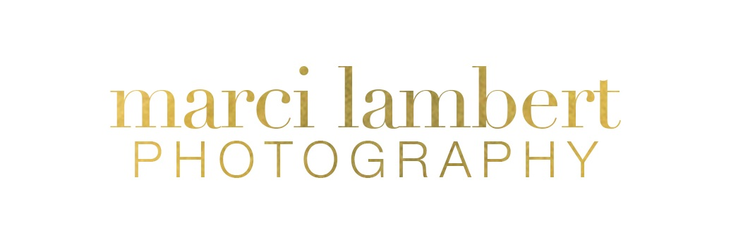 Marci Lambert Photography