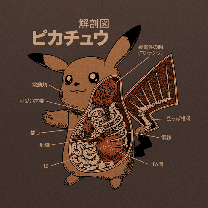 Pikachu-Anatomy_preview.jpg