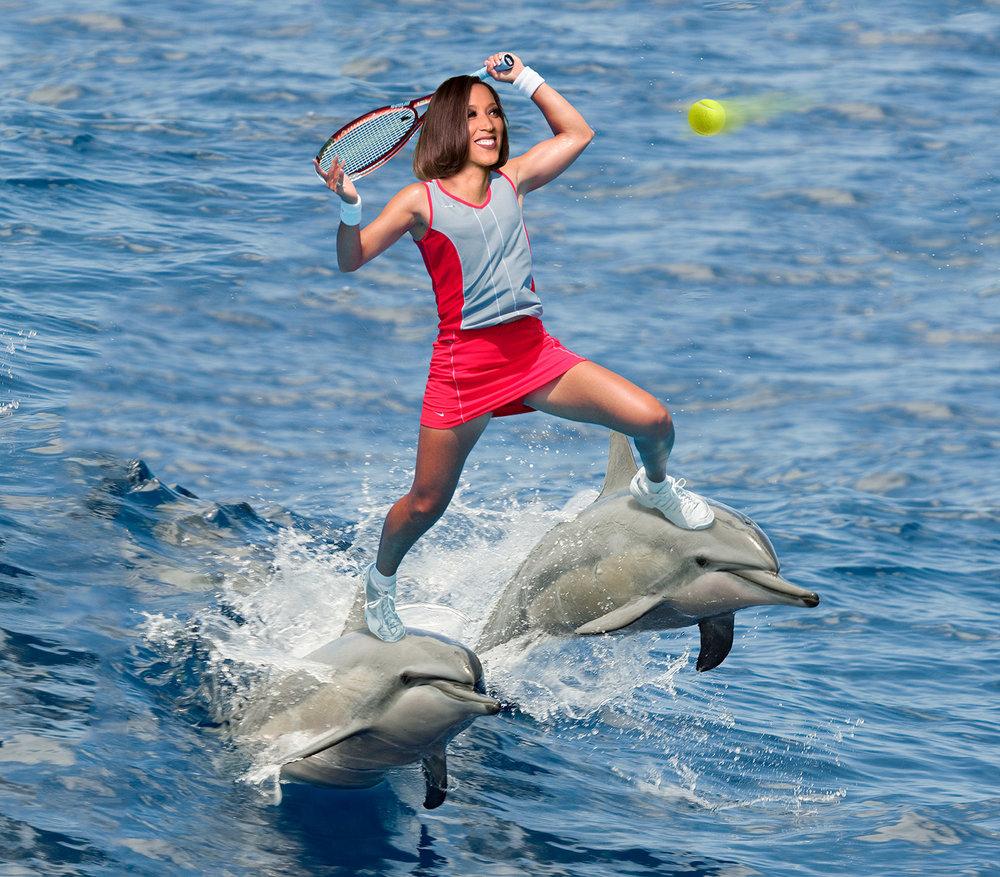 robin-dolphins.jpg