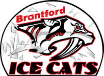 brantford ice cats.jpg