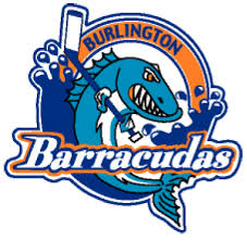 barracudas.png