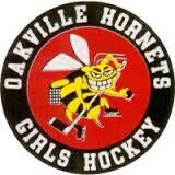 oakville hornets.png