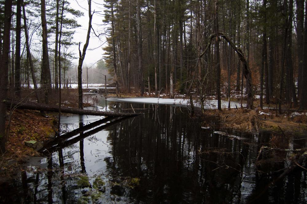 water-0375.jpg