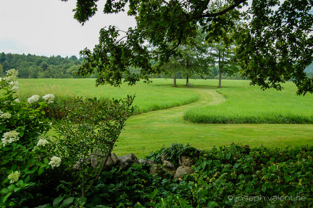 A mown path leads to a bench under three oak trees in the Vermont garden of Gordon and Mary Hayward.