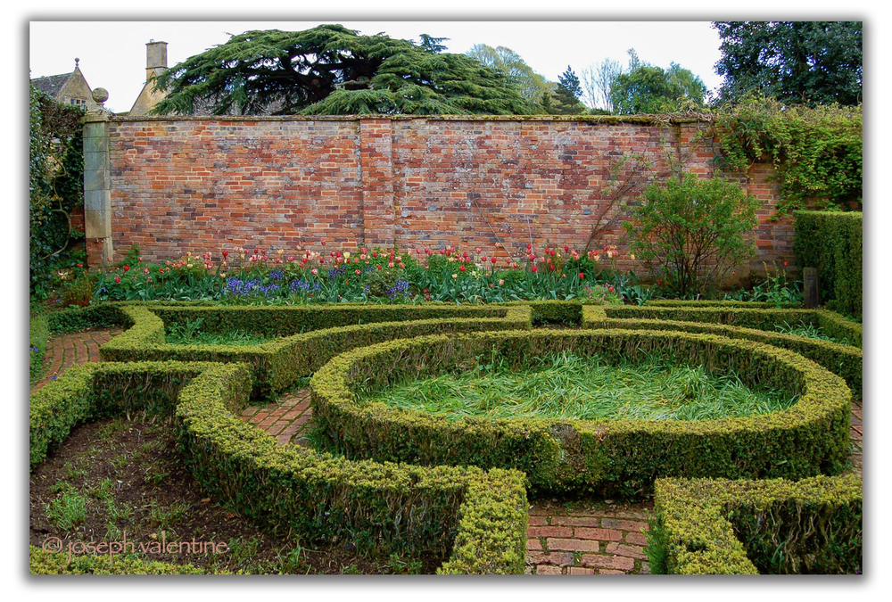 The parterre in the Fuschia Garden at Hidcote.